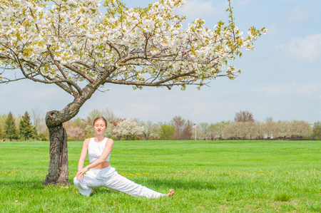 Beautiful young woman is practicing yoga near blossom tree at the park. Meditation concept Stockfoto - 122881348