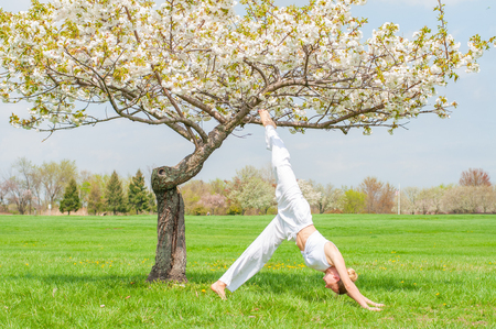 Beautiful woman is practicing yoga, doing Adho Mukha Svanasana exercise, standing in Downward facing dog pose near blossom tree at the park.