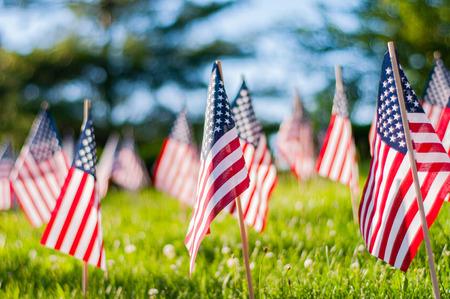 Feier zum Gedenktag. Kleine amerikanische Flaggen auf grünem Gras im Park.