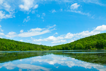Landscape lake and blue sky. Summer beautiful wild nature, forest. Lake with mirror reflections on sunny day.