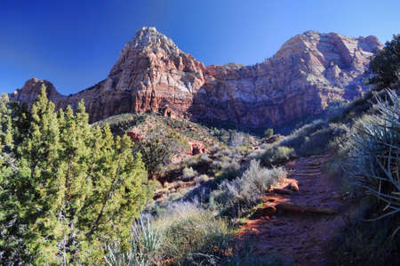 The Watchman at Zion Natl   Park