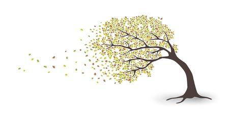 Tree in storm Illusztráció