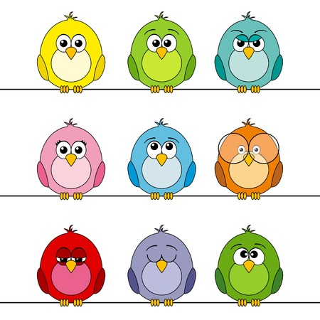 Funny colorful birds,