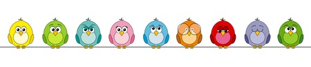 submission: Funny colorful birds, panoramic