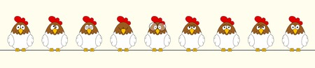 Funny roosters, panoramic
