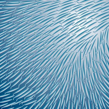 er: Gröer Fish Illustration