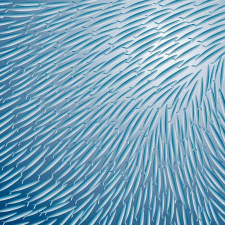 sea fish: Gr�er Fish