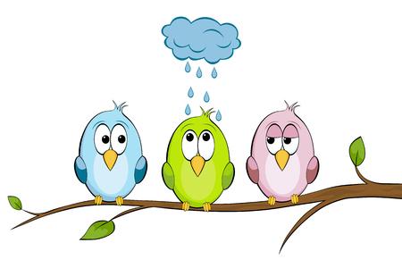 Three funny birds Illustration