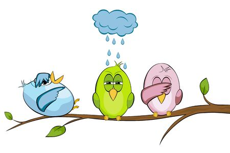 stir: Three funny birds Illustration