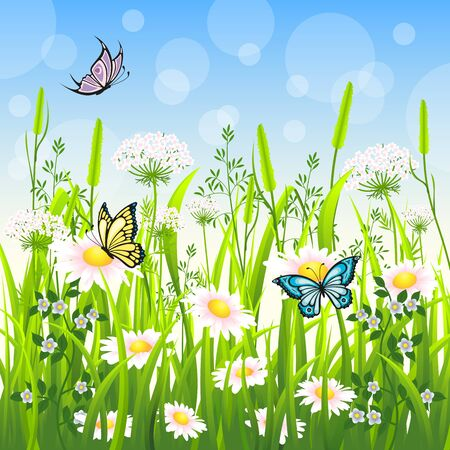 butterfly flower: Flower meadow in summer with butterfly Illustration