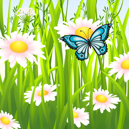 buzzer: Flower meadow in summer with butterfly Illustration