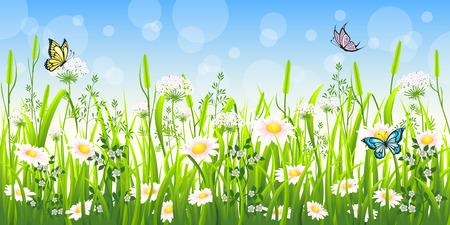 flower fields: Flower meadow in summer with butterfly Illustration
