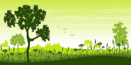 vektor: Sommerlandschaft mit Blumen und Bäumen