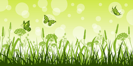 buzzer: Summer meadow with flowers and butterflies Illustration