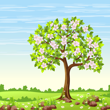 pink bushes: Spring landscape with tree and flowers