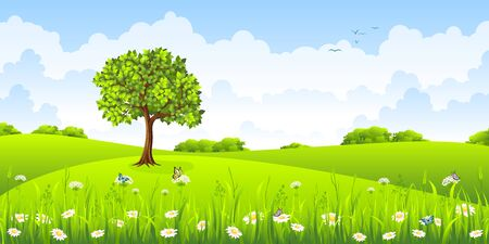 buzzer: Summer landscape with flowers and butterflies Illustration