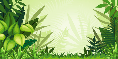 Illustration jungle landscape