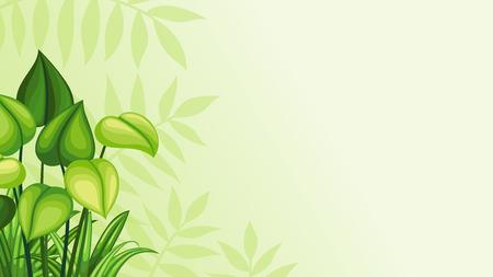 amazon rainforest: Illustration jungle background