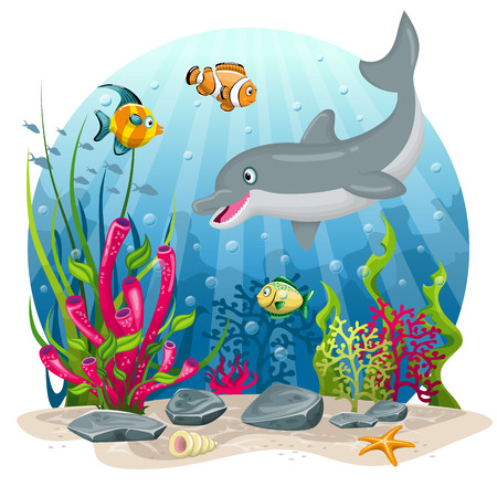Dolphin and fish in the sea