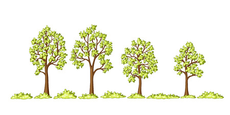 hedges: Illustration of some trees and bushes Illustration