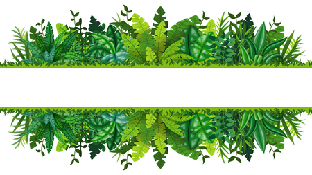 Illustration of a tropical rainforest banner Ilustração
