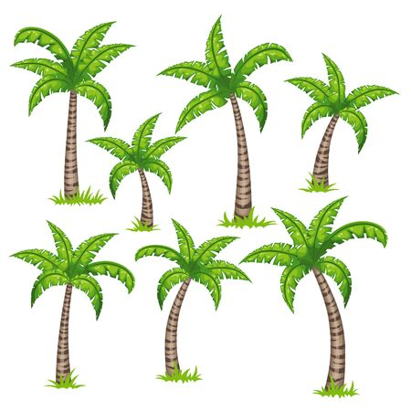 barque: Set of different tropical palm trees.