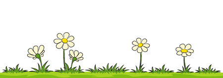 Flowers on a meadow against white background