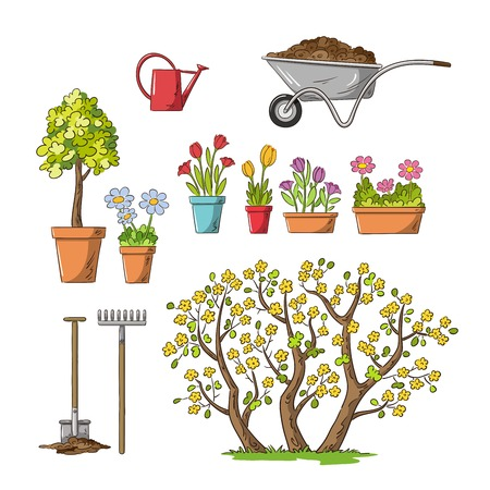 Collection of flowers and garden tools. Hand draw vector illustration. Illustration