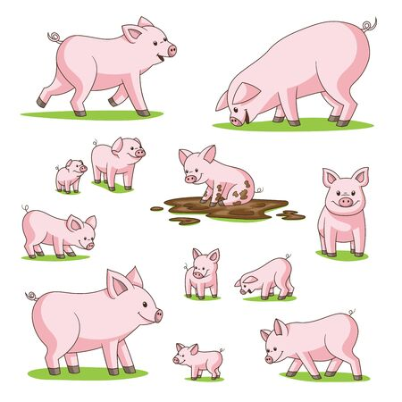 Collection of cute cartoon pigs. Isolated on white background.