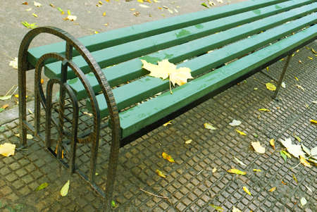 foreshortening: A lonely bench in city park, autumn, crude cloudy weather, a leaf fall.