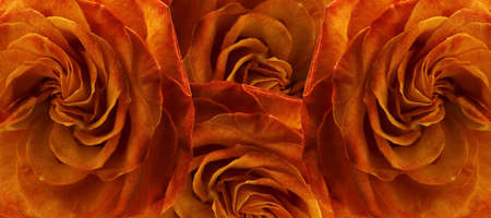 wickerwork: Abstract illustration. Decorative background, made from the colors of rose.
