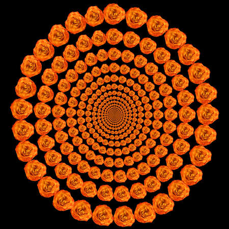 curtailed: An abstract illustration. Concentric circles from colors the roses leaving in infinity. Absolutely black background.  Stock Photo
