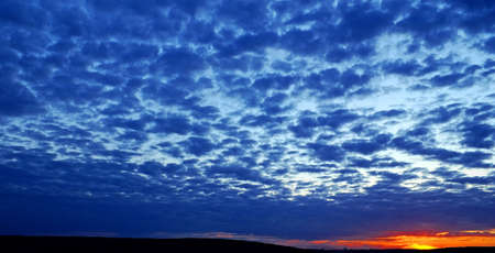 cloudiness: Dense dark blue cloudiness on sunset of warm summer day.