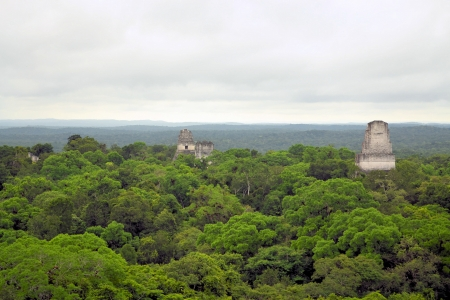 pre columbian: Temples of the Mayan culture in Tikal, Guatemala