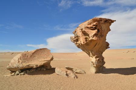 arbol: Formaci�n-en-roca �rbol piedra del desierto boliviano - Arbol de piedra, Bolivia