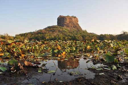 Sigiriya Lion Rock Fortress in Sri Lanka, so-called 8th wonder of the world and former monastery photo