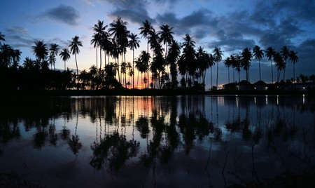 sees: A beautiful sunset sees palm trees reflecting in a pool next to the beach on Ko Lanta, Thailand
