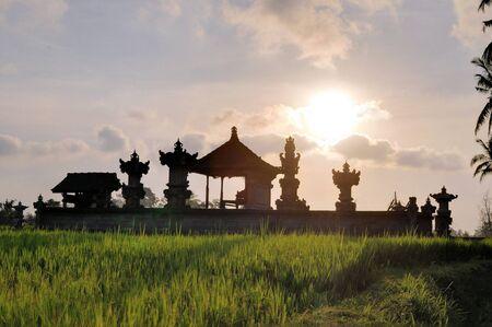 paddies: Hindu temple in green rice paddies near Ubud, Bali, Indonesia