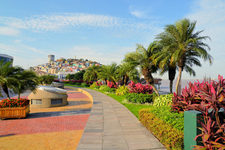 guayaquil: Garden seaside Malecon 2000 park and pedestrian walkway with Santa Ana Hill in background, Ecuador