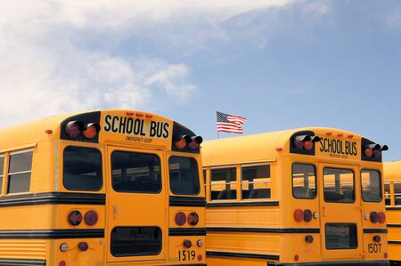 busses: Number of typical American school busses in a row in the desert near Albuqerque, New Mexico