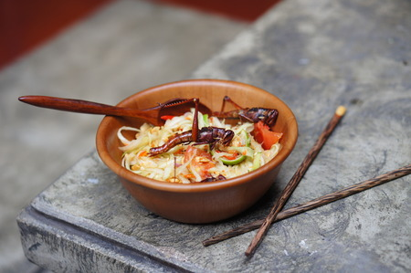 Grasshoppers, also known as chapulines, are an important part of traditional Thai food Stock Photo