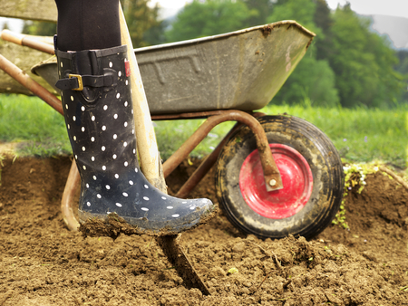 photo shows a close up of a rubber boot digging in the garden - how to create a new garden bed Stock Photo