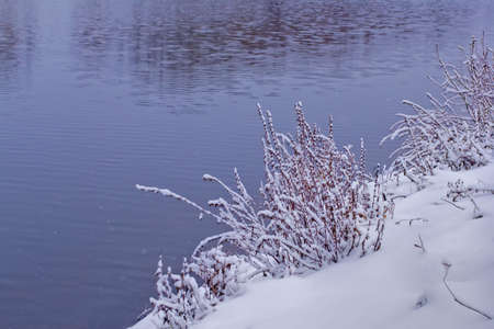 Winter river bank. Dry herbs stand are covered with snow. Water did not freeze yet. A background for the text. 写真素材