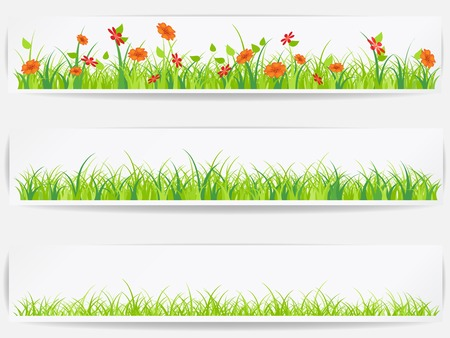grass: Set of  backgrounds with vector green grass