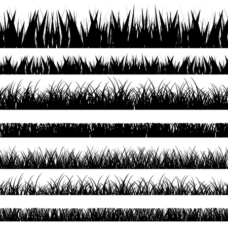 black and white flowers: Vector illustration. Set with realistica grass. Nature.