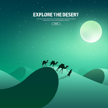 horizont: Desert trip. Extreme tourism and travelling. Back to nature. Sands.Exploring Africa. Horizont line with sky,stars.Camels