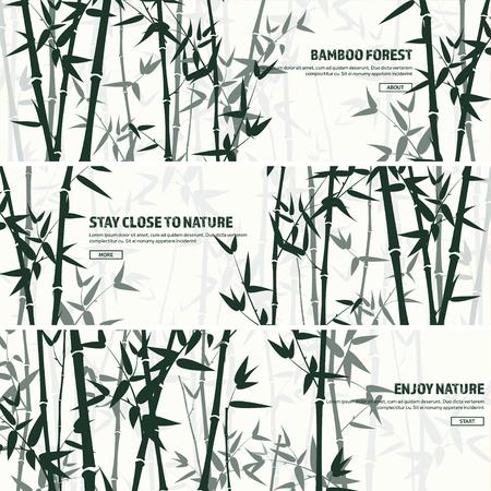 Bamboe bos set. Natuur. Japan., China. Fabriek. Groene boom met bladeren. Regenwoud in Azië. Stockfoto - 73591029