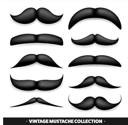 burly: Mustache isolated on white. Black vector vintage moustache. Facial hair.Barber shop. Retro collection. Hipster beard.