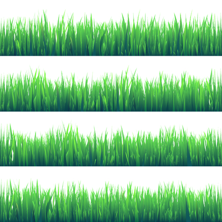 Grass isolated on white set.