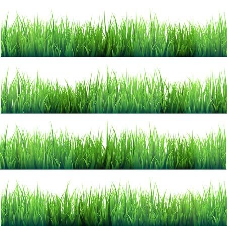 Gras op witte reeks wordt geïsoleerd die. Stock Illustratie